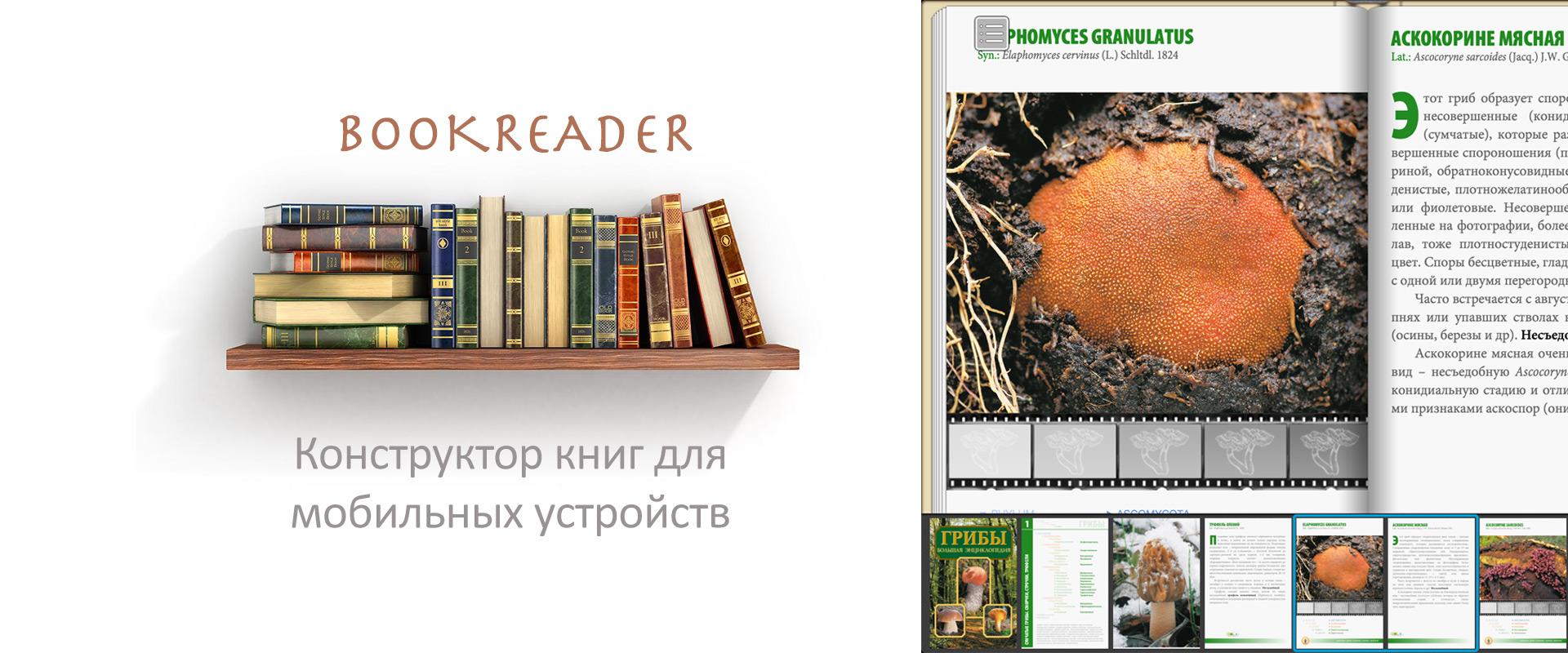slide_app_bookreader_ru